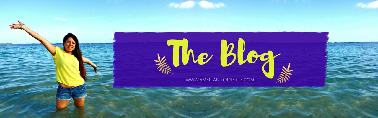 Ameli Antoinette Blog